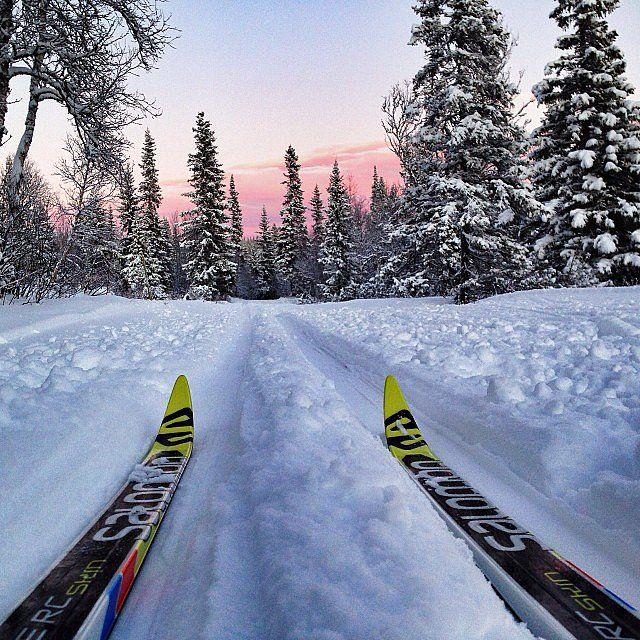 Get Outdoors and go skiing!