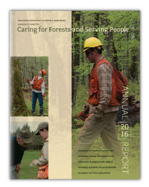 2016 Division of Forestry Annual Report