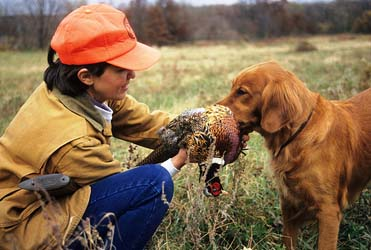 Fall pheasant hunting