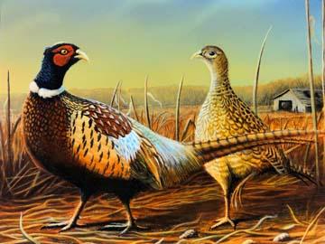 2012 Pheasant stamp