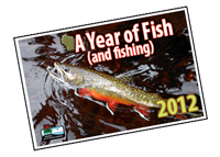 Fishing wisconsin fishing licenses wisconsin dnr for Wisconsin dnr fishing license online