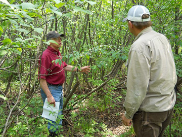 Interested landowners can visit with DNR program specialists to learn more about the partnership and obtain resources for planning and conducting habitat work.