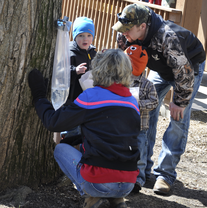 Volunteers are need to assist with the 2016 Maple Festival at the MacKenzie Center.
