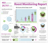 2015 little brown bat roost report. Click on image for larger size