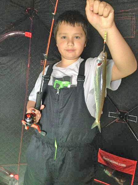 Tanner Derusha, age 9, and his hook and line record rainbow smelt. Tanner, of Odanah, could tell that he had a nice smelt on the line by the way the fish fluttered. But it wasn't until he brought the fish up through the ice and compared it with some of the others that he and his father realized they had something truly special.