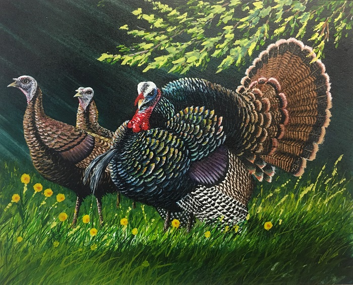 First place in the 2018 Wild Turkey Stamp design contest was awarded to Robert Leum of Holmen for his painting of a tom in full strut and two hens in a grassy field.