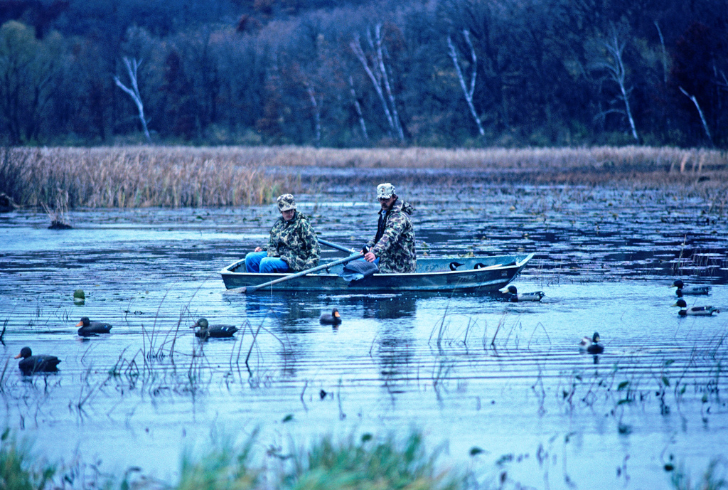 The 2017 North Zone duck season opens Sept. 23.