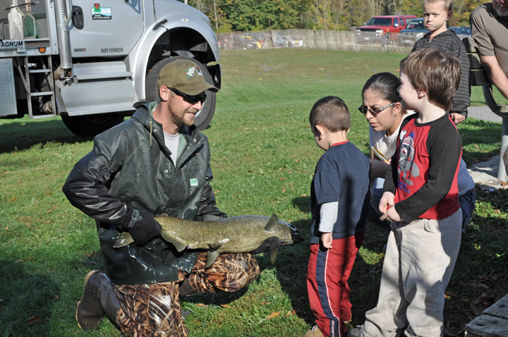See Lake Michigan trout and salmon up close during the Besadny and Root River hatchery open houses.