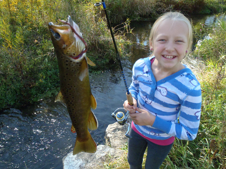 Help create the plan to guide trout management in Wisconsin for the next 10 years by applying to serve on DNR's trout advisory team.