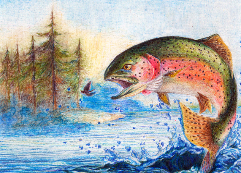 2017 Winning Inland Wisconsin Trout Stamp