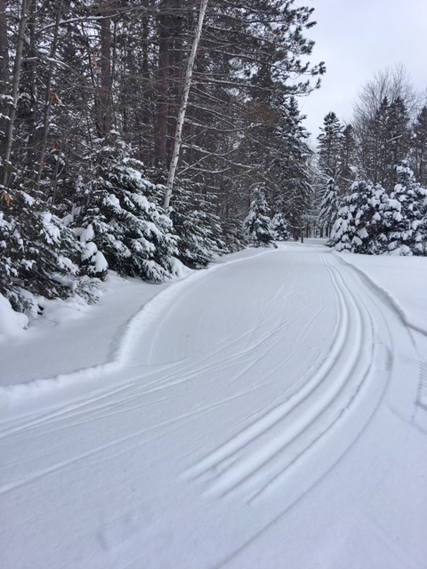 People can now check on cross-country ski conditions at many state properties through the DNR website. - Photo credit: DNR