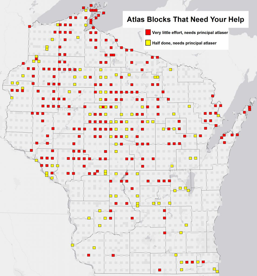 Bird lovers can help complete a comprehensive survey of birds that nest in Wisconsin by volunteering to record their observations in those locations with red and yellow blocks. Locations with red blocks are particularly in need of help - Photo credit: Nick Anich
