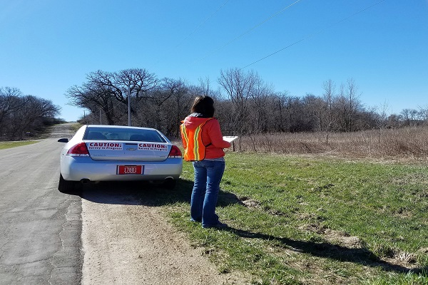 Each spring, DNR staff and volunteers complete surveys to learn more about Wisconsin's pheasants, ruffed grouse, frogs and a variety of other wildlife species. - Photo credit: DNR