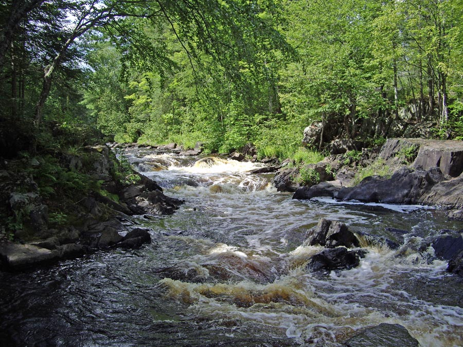 Meyers Falls on the Pine River, part of the Pine-Popple Wild Rivers property, which is included in this planning process.. - Photo credit: DNR