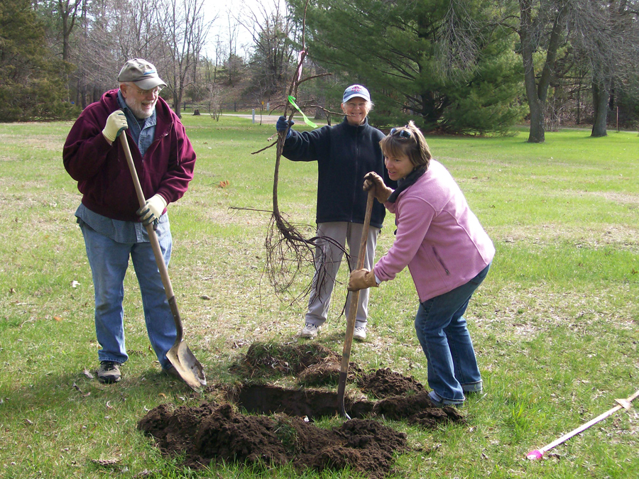 Tree planting is one of the popular activities carried out during Work*Play*Earth Day events around the state. - Photo credit: DNR