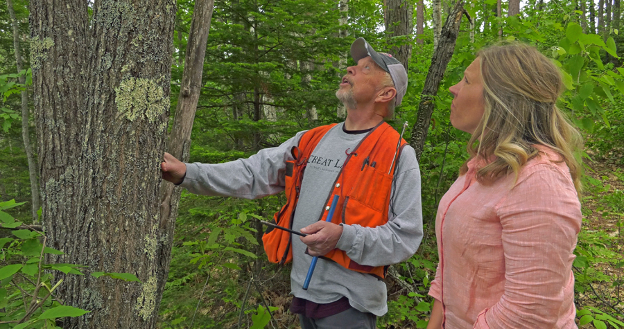 By working with professional foresters landowners can learn how to enrich their forest experience. - Photo credit: DNR