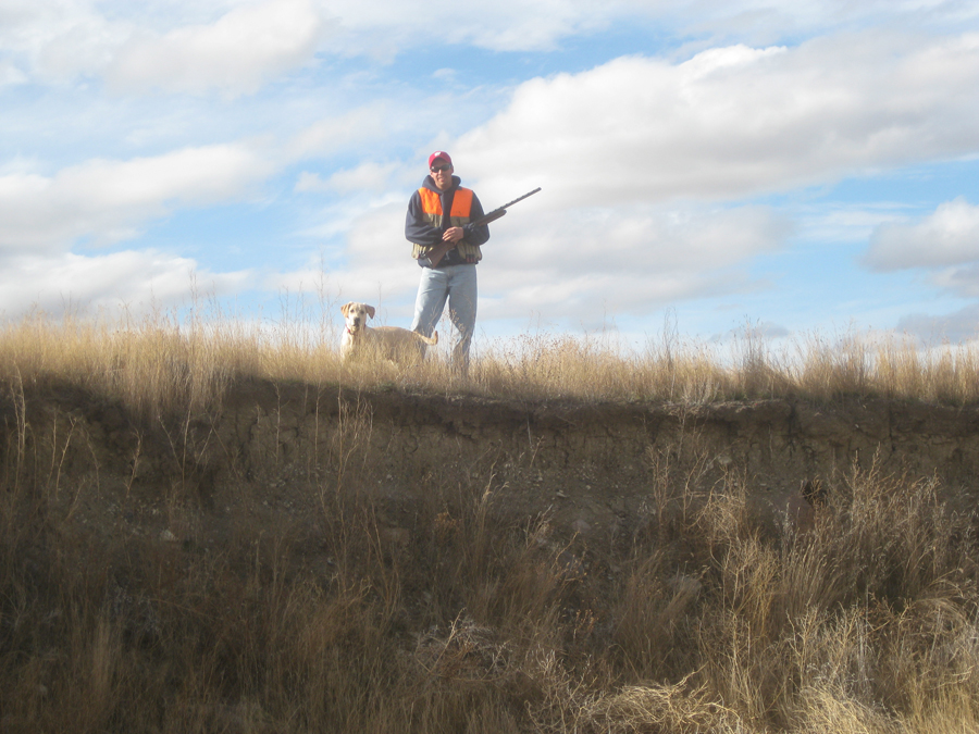 Wisconsin's pheasant season opens Oct. 19. - Photo credit: DNR