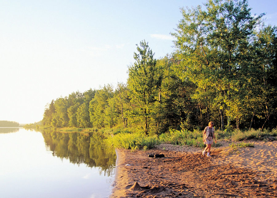 A photo from the 1999 DNR Archives of a walk on a sandy beach on the Willow Flowage.