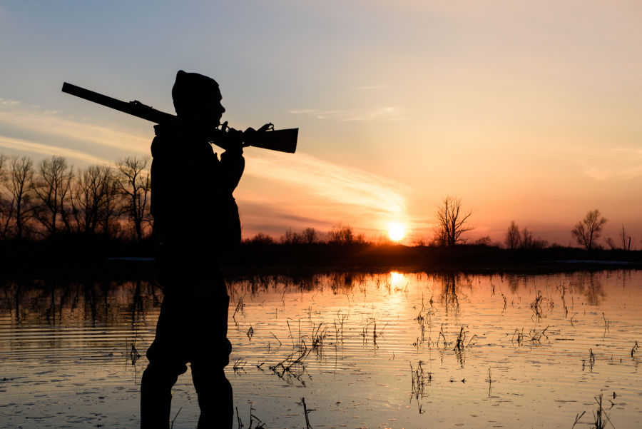 Early teal, early goose and dove seasons all open Sept. 1. - Photo credit: Wisconsin DNR
