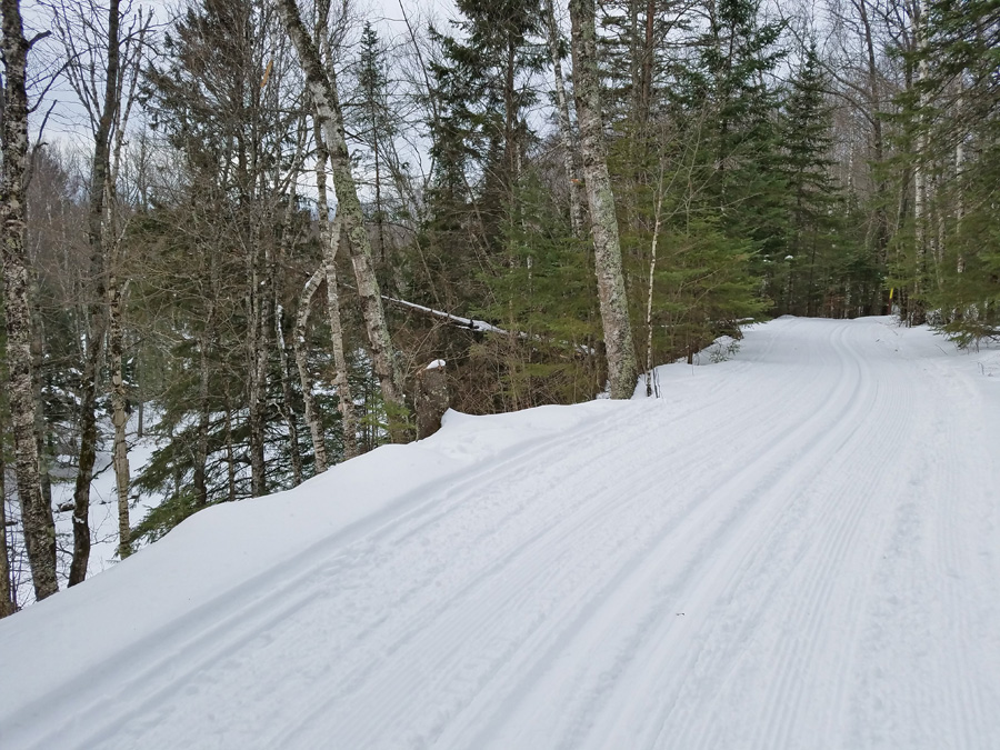 Cross-country ski conditions were very good at Pattison State Park after the area received about 10 inches of snow this week. - Photo credit: DNR