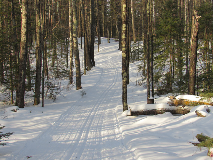 People can now check on cross-country ski conditions through the DNR website. These freshly groomed trails are at Pattison State Park. - Photo credit: DNR