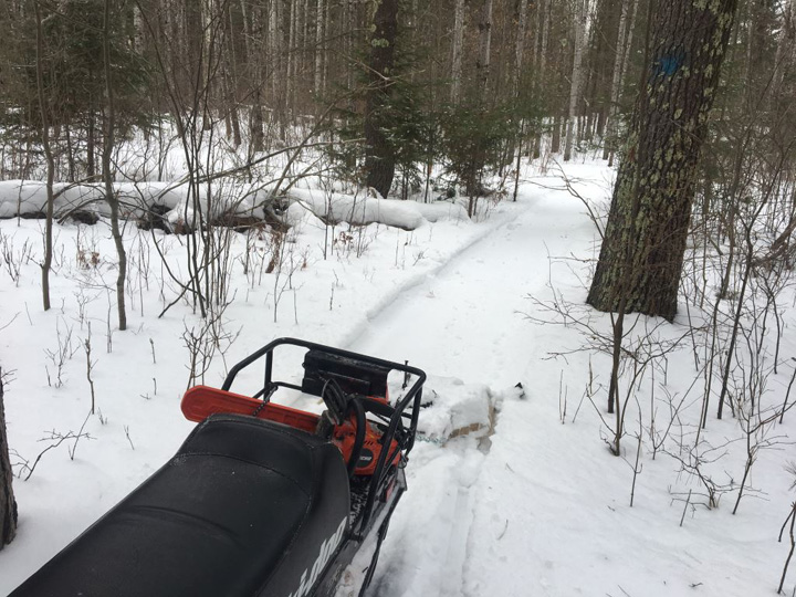 The Brule River State Forest has begun grooming trails for fat biking and snowshoeing. - Photo credit: DNR