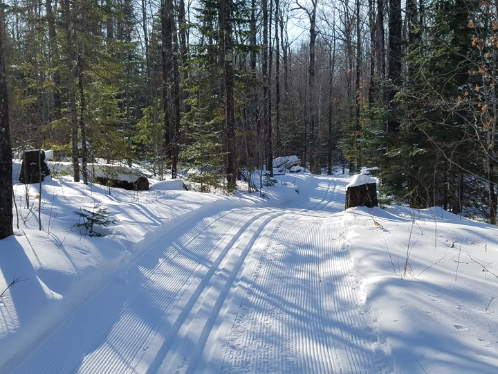 With good snow in the north, ski trails are in excellent condition on many properties, like these at Pattison State Park. - Photo credit: Gervase Thompson