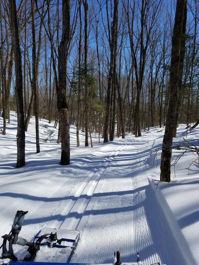 Northern parks and forests, Like Pattison State Park, still have good conditions for cross-country skiing.  - Photo credit: Gervase Thompson, DNR