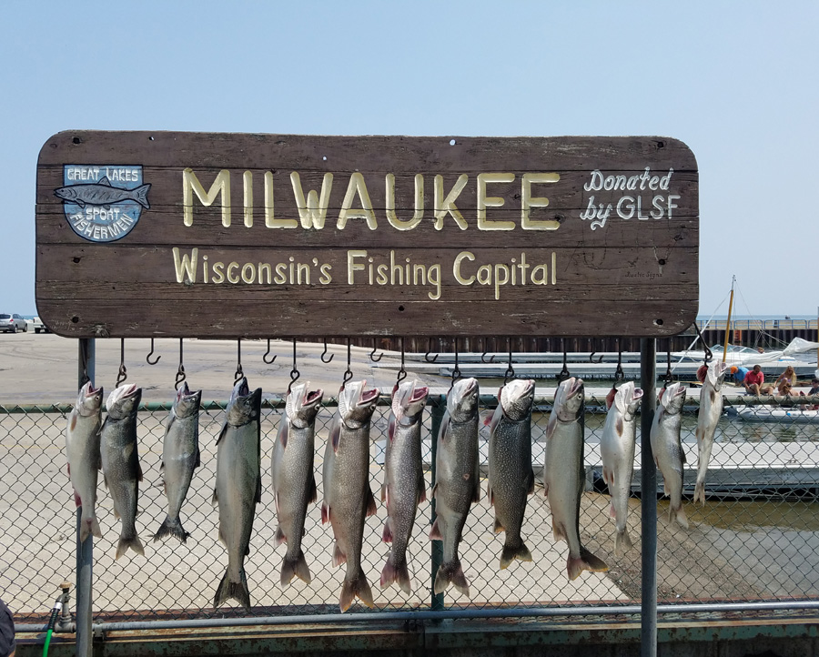 Lake trout and chinook fishing has been good out of Milwaukee. - Photo credit: Reni Rydlewicz