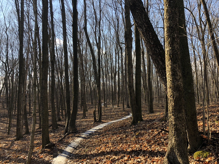 Icy trails such as these at the New Fane trail in the Northern Unit of the Kettle Moraine State Forest are leading to the cancellation of some events. - Photo credit: James Enigl