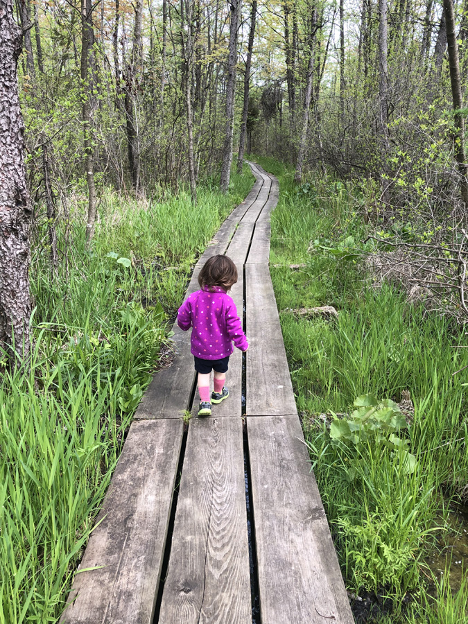 This weekend is Free Fun Weekend when there is free fishing and free admission to parks, forests and trails. A great opportunity to take the family on a bog hike. - Photo credit: James Enigl