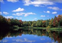 Willow Flowage, Oneida County (Photo)