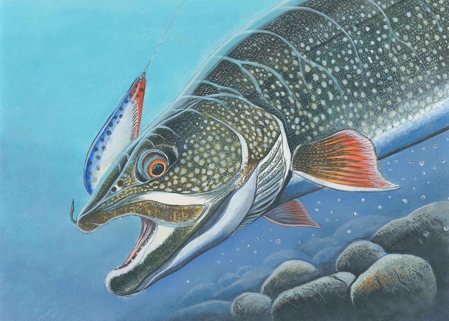 2019 Great Lakes Salmon/Trout Stamp