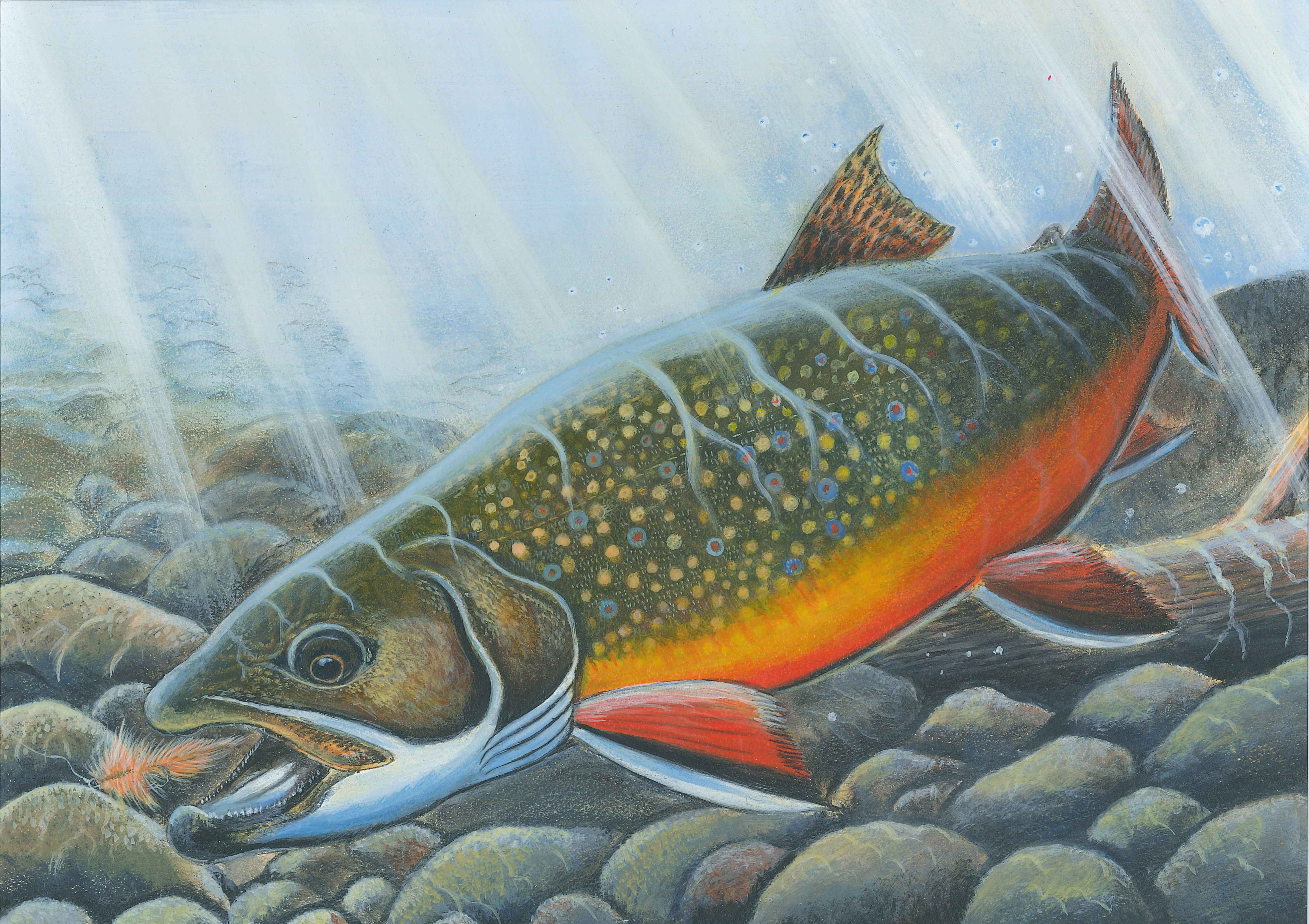 2019 Inland Trout Stamp