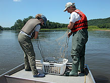 Mississippi River fish study EIS