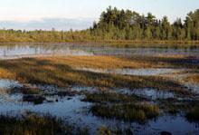 Lake Shallow Soft Seepage