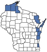 Counties shaded blue have documented occurrences for Great Lakes Beach in the Wisconsin Natural Heritage Inventory database.