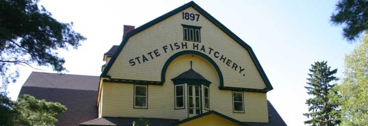 Bayfield fish hatchery for Wisconsin fish farms