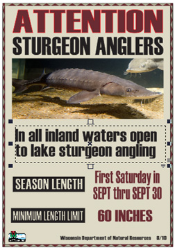 Fishing wisconsin sturgeon hook and line season for How much is a wisconsin fishing license