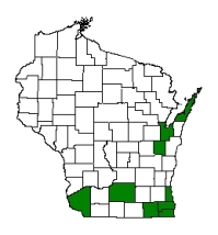 Known county distribution of tree of heaven