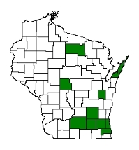 Known county distribution of tall manna grass