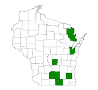 Known county distribution of perennial pepperweed