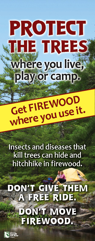 Protect the Trees - Where you live, play or camp.