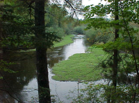 Prairie River Fishery Area