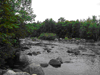 Upper Wolf River at Hollister