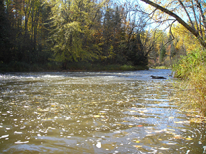 White River Fishery Area