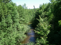 evergreen river