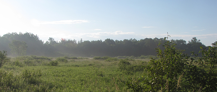 McMillan Marsh Wildlife Area