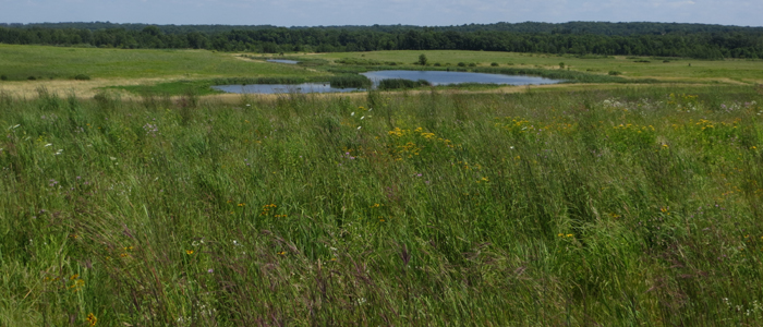Oden Wildlife Area