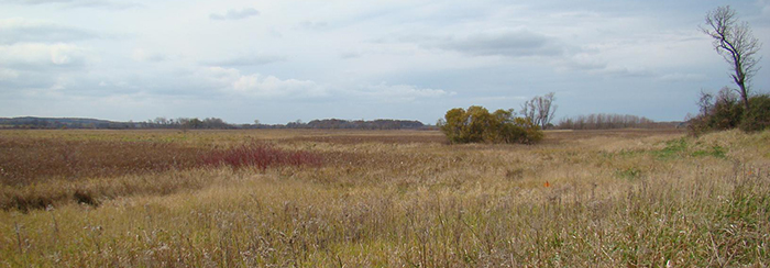 Peter Helland Wildlife Area